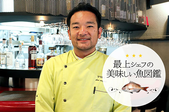 最上シェフの美味しい魚図鑑