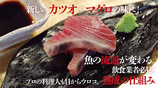 魚食革命『津本式 究極の血抜き』